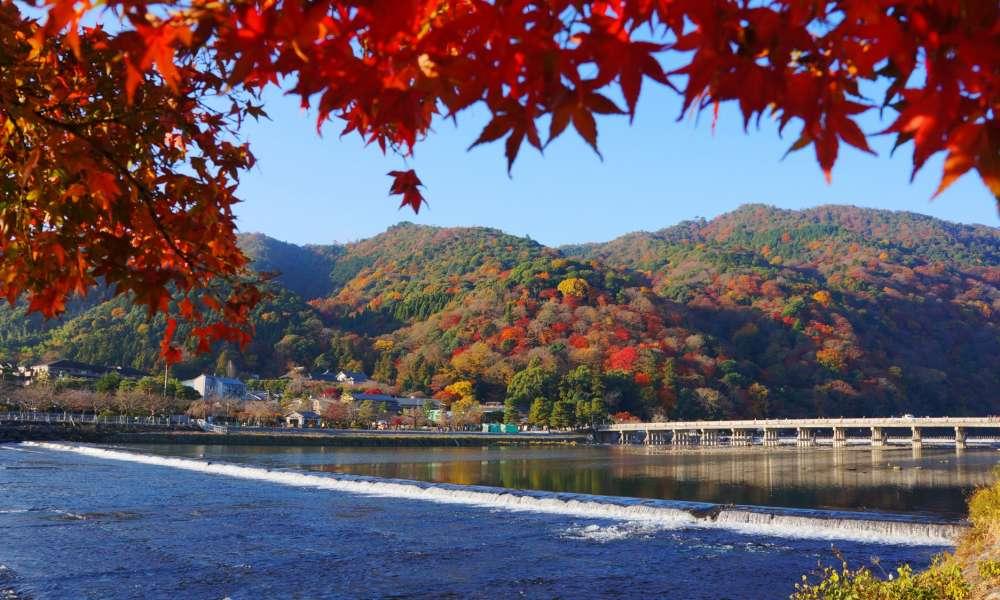 嵐山ホテルプロジェクト